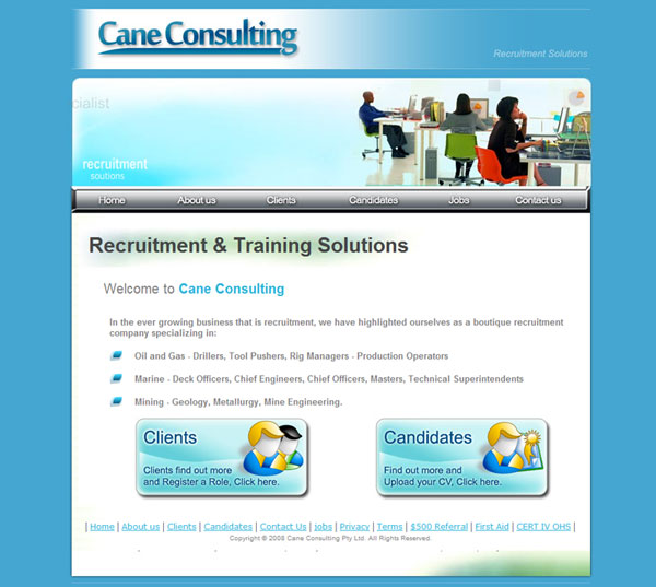 Cane Consulting Website